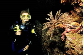 Specialty courses 3 dives program
